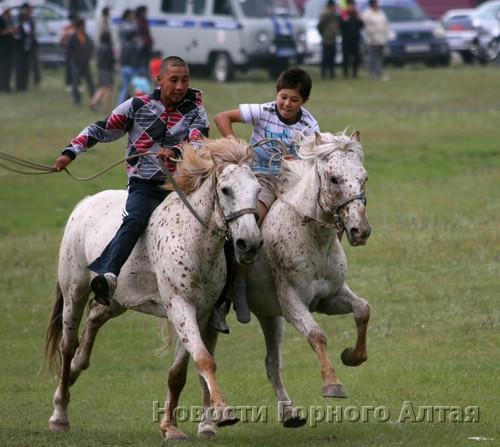 Забег лошадей чубарой масти