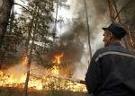 В Онгудайском районе локализован лесной пожар