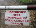 В территории Горного Алтая введен особый противопожарный режим