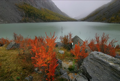 Озеро Маашей до происшествия. «Алтай-Фото»