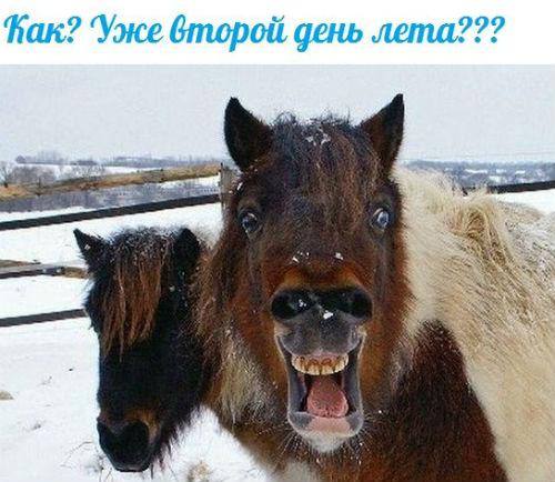 В связи с аномально низкими температурами и снегопадом в Кузбассе в социальных сетях имеют хождения такие карикатуры