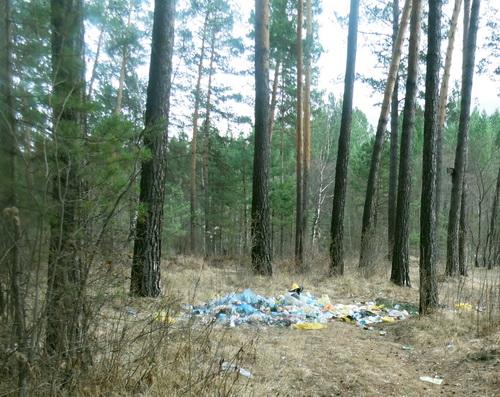 В Чемальском районе обнаружены несанкционированные свалки по берегам рек