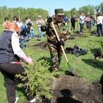 Александр Бердников с супругой посадили ель