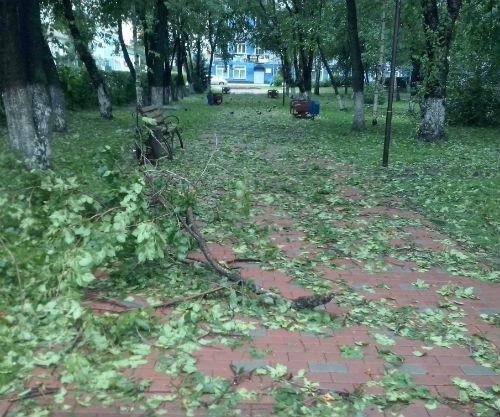 После стихии… Фото Елена Козлова, facebook.com