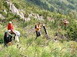 Катунский заповедник набрал добровольцев для летних работ на отдаленных кордонах