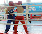 В Горно-Алтайске прошел турнир по кикбоксингу
