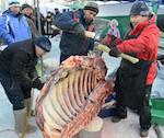 Более 20 тонн мяса продано на сельхозярмарке