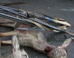 Сотрудники полиции изъяли с места происшествия мясо и шкуры животных, а также три единицы оружия. Подозреваемые в совершении преступления доставлялись в отдел полиции, ведется разбирательство.
