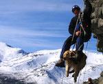 Служебные собаки со всей России тренируются на Алтае