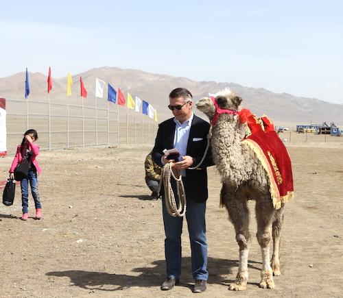 Руководителю «Хевела» подарили верблюжонка
