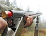 В охоткомитете обсудят лимиты добычи животных