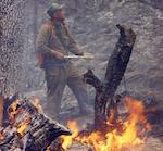 Природный пожар в Улаганском районе локализован