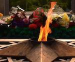Осквернитель Мемориала Славы попал под амнистию в честь Дня Победы