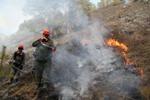 Сухие грозы спровоцировали пять природных пожаров в Горном Алтае
