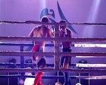 Спортсмены из Горно-Алтайска успешно выступили на турнире «Битва на Катуни»