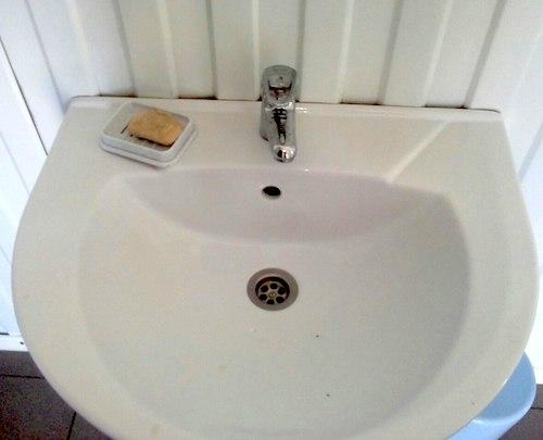 Имидж Алтая отмоют мылом?