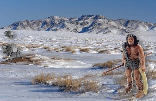 Чагырский неандерталец. Изображение: nsu.ru