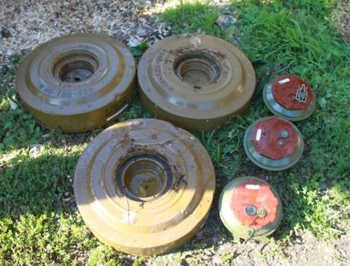 Школьник нашел в лесу противотанковые мины