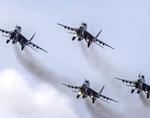 Алтайский сенатор поддержала действия России в Сирии