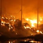 7 тысяч тюков сена сожгли у фермера в Кызыл-Озеке