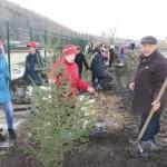 В День комсомола в Горно-Алтайске заложили аллею