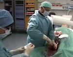 В республиканской больнице впервые провели стентирования сонной артерии