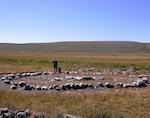 Первый в России ландшафтный музей под открытым небом появится в Кош-Агаче