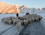 На поддержку сельхозтоваропроизводителей из-за сложной зимовки выделено еще 10 млн рублей
