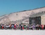 В «Лыжне России» приняли участие 1,5 тыс. человек