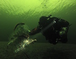 На Телецком озере дайверы вновь освободили рыбу из браконьерских сетей (видео)
