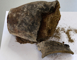 Керамический сосуд гунно-сарматского времени нашли в Курае (фото)
