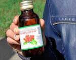 В Совете Федерации обсудили проблему продажи «Боярышника»