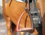 Ребенок из Бийска погиб в конном туре, упав с лошади