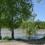 На Южном готовятся к наводнению