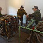 Подготовка пантов к варке