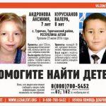 Следователи возбудили уголовное дело после пропажи двоих детей в Турочаке