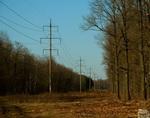 Мужчина погиб на лесоперерабатывающей фабрике в Горно-Алтайске