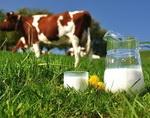 В республике сократились объемы выпуска сельхозпродукции