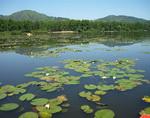 Бизнесмена оштрафовали за бардак на Манжерокском озере