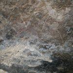 Уникальные рисунки каменного века нашли в Горном Алтае