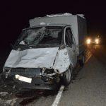 Фотофакт: Выбежавшая на дорогу лошадь стала причиной ДТП на Семинском перевале