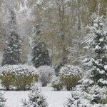 Сильный снегопад обрушился на Горно-Алтайск