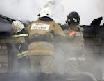 Из-за гусей в Горно-Алтайске чуть не сгорел дом