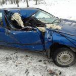 В Усть-Канском районе на перевале столкнулись две иномарки