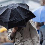 На Алтае объявлено штормовое предупреждение, ожидаются сильный дождь и ураганный ветер