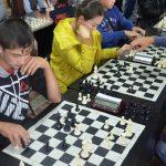Международный детский фестиваль интеллектуальных игр прошел в Кош-Агаче