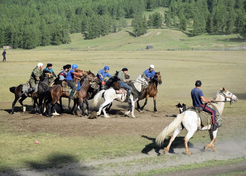День пастуха отметили в Улагане