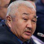 В Госдуме обсудили вопросы финансирования борьбы с шелкопрядом