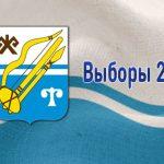 Девять самовыдвиженцев планируют принять участие в выборах депутатов горсовета