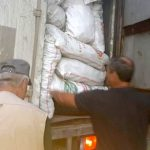 Более тонны незаконно добытых ценных растений изъяли пограничники у браконьеров